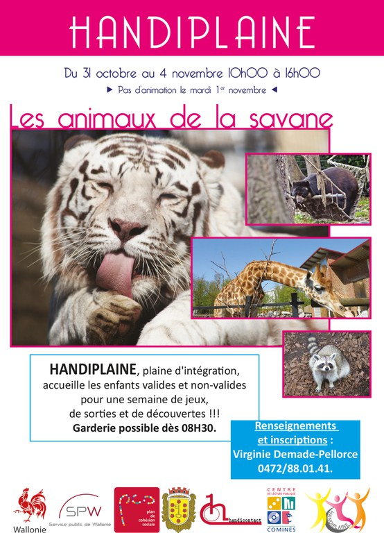 flyer handiplaine novembre 2016(1)